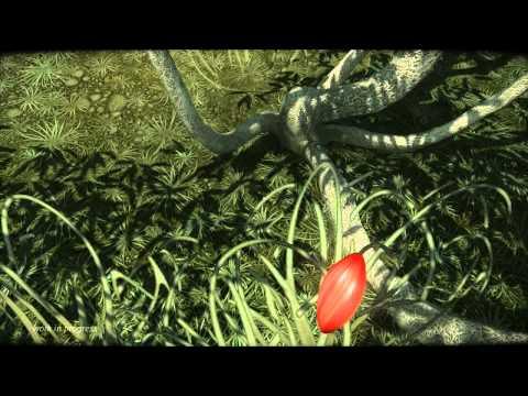 Cradle - видео игрового процесса