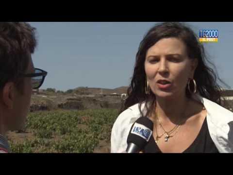 """Tg2000 il Post:""""Pantelleria ferita"""" di Fabio Bolzetta"""