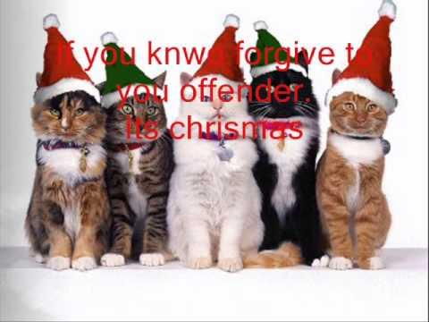 video-carta en ingles de navidad, gatos navideños