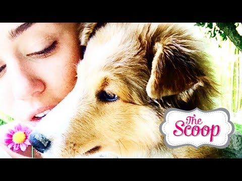 Miley's New Puppy and Nicki Minaj Disses Iggy Azalea?! #TheScoop with Eva and Arden