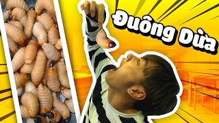 THỬ THÁCH ĂN ĐUÔNG DỪA (Challenge với Channy, Nấm, Mazk, Tippy, Nabee, Sơn Mindhack)