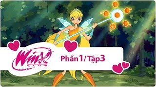 Video | winx club phan 1 nhu | winx club phan 1 nhu
