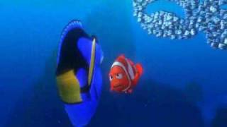 Finding Nemo School Of Fish