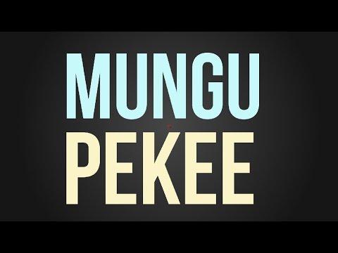 Nyashinski - Mungu Pekee Video