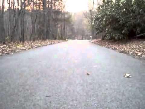 Amazing bigfoot sighting 2014 youtube