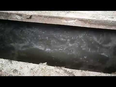 Mieszadło do gnojowicy podrusztowe MGP 5 AGROMOTOR