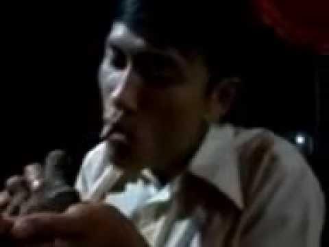 NHẠC SỐNG QUẢNG NGÃI-89 (New) nút lưởi với chim CU...kaakaka hiii