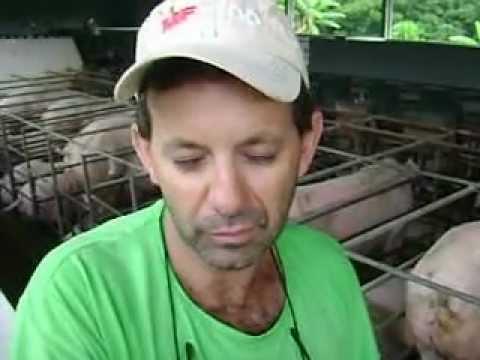 Geraldo José de Souza - Pará de Minas/MG