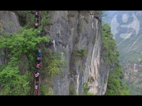800m cliff School Run