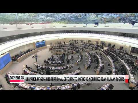 UN panel urges international efforts to improve North Korean human rights