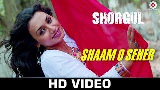 shaam o seher song in shorgul, shaam o seher song in shorgul movie, shaam o seher song,  shorgul movie, bollywood movies, bollywood