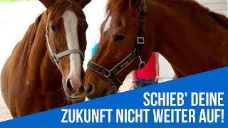 Weiterbildung Coaching mit Pferden (HORSE ASSISTED COACH)