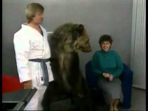 bear attacks woman -LoPPGrXJhPg