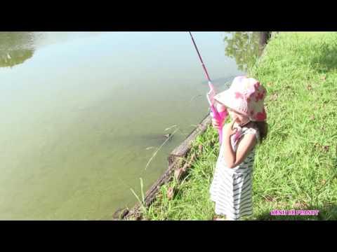 Bé Peanut Đi Câu Cá Mùa Hè - Đồ Chơi Câu Cá Hello Kitty Fishing Pole