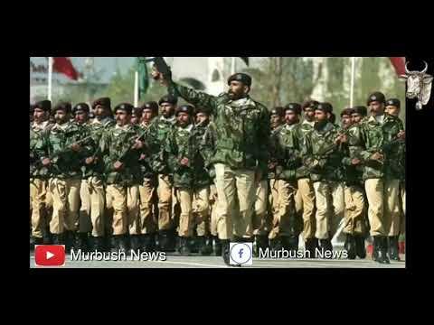 Pakistan vs India funny defense analysis by murbush kaka