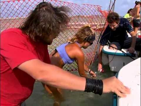 Aventura Selvagem - Mundo dos Tubarões - Parte 1