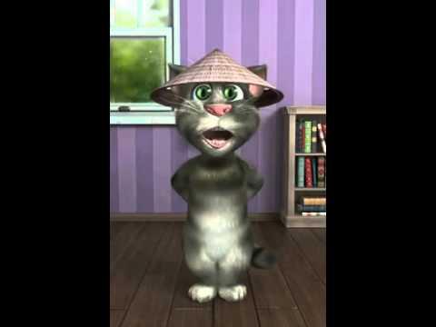 Mèo hát nhạc chế