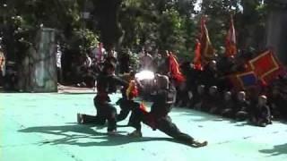 Đại Hội Võ Thuật Nam Hồng Sơn 2007 - Môn Phái