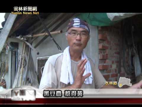 雲林新聞網 水林自然農法黑豆人工灶炒