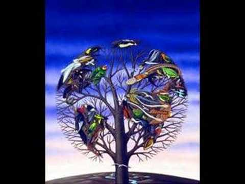Talk Talk - NEW GRASS - 1991