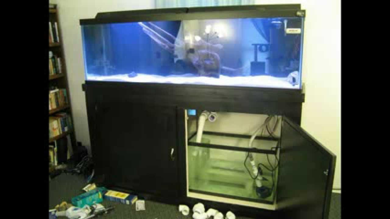 125 Gallon Aquari Sequa & 125 Gallon Aquarium Lid - 1000+ Aquarium Ideas