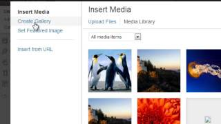 Adding Multiple Images in WordPress