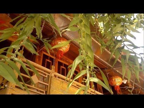 Gia chủ phố núi với thú chơi phong lan rừng, vườn lan trên non bộ được thiết kế đẹp mắt – Orchid 05