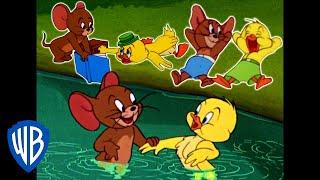 Tom a Jerry - Jerry  a malá kachna