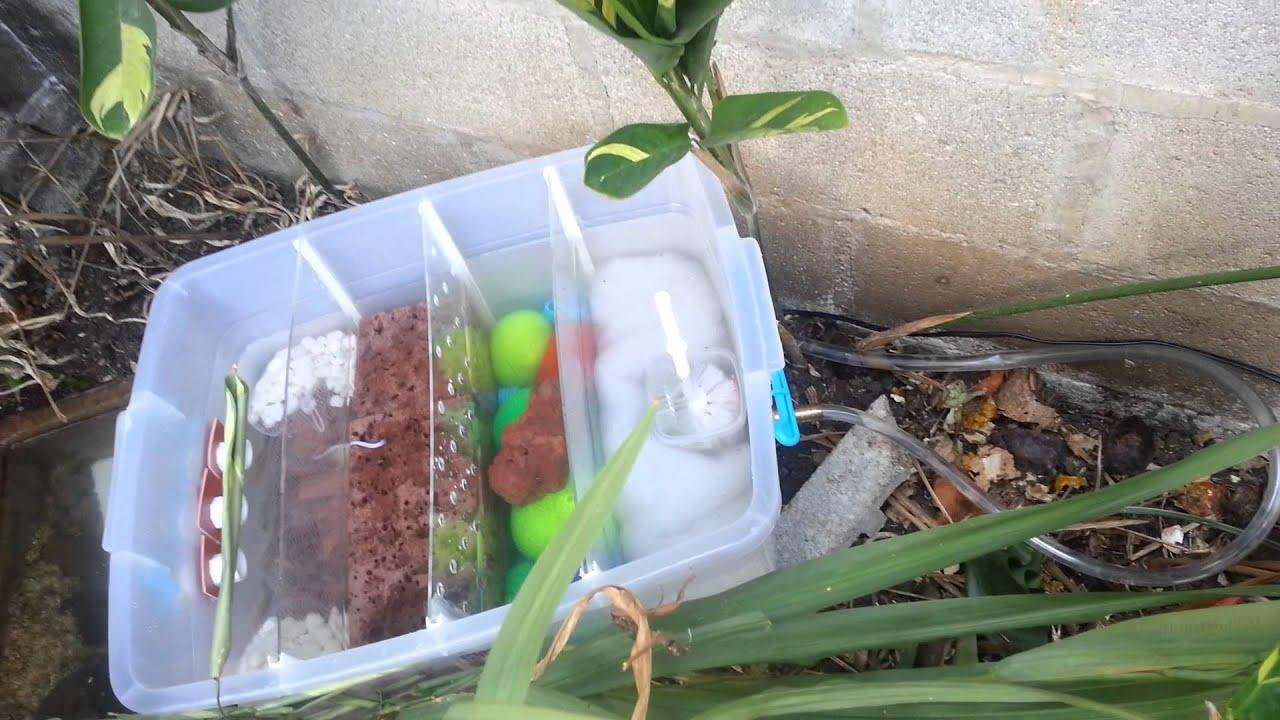 for Filtro natural para estanque