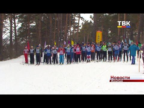 Искитим впервые принял участие в «Лыжне России»
