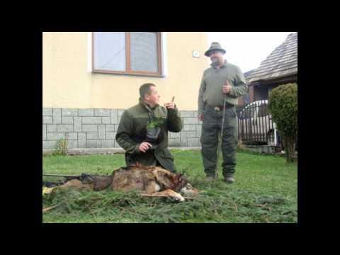 Poľovníctvo Čirč