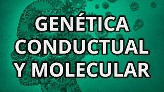 Psicología. Genética Humana II