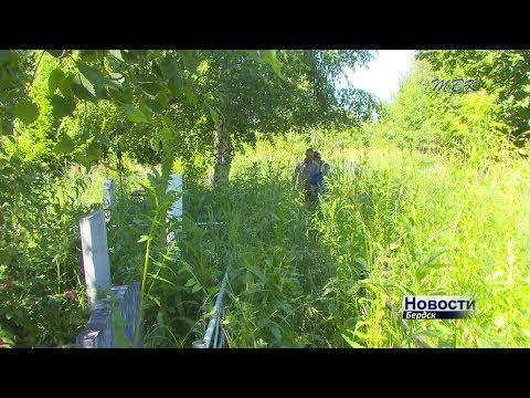 Новое кладбище Бердска зарастает травой