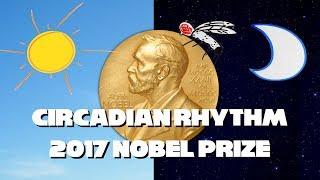 2017 Nobel Prize for Circadian Rhythm