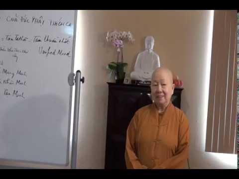 Tiến Trình Chứng Ngộ Của Đức Phật Thích Ca