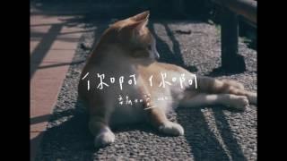魏如萱 waa wei [你啊你啊] 官方完整試聽版MV