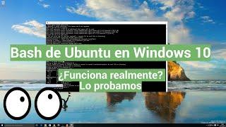 ¿Cómo funciona el bash de Linux sobre Windows 10?