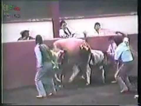 video de muertes sangrientas: