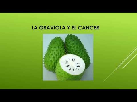 La graviola y el cancer - Beneficios de la Medicina Natural
