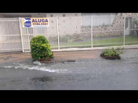 Vídeo Chuva forte transforma rua Major em rio