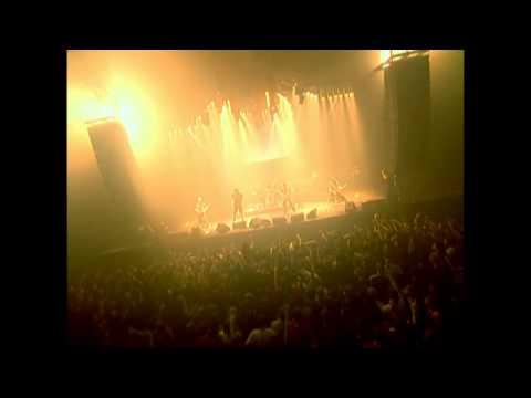AMATORY - Клетка (Live Evil)