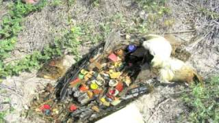 Ted Talks: Captain Charles Moore on the Seas of Plastic
