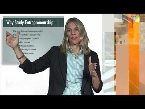 Entrepreneurs Cases & Studies Lecture 1 part 2