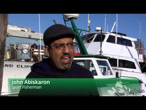 Pulse of the Port: Sport fishing at Berth 55
