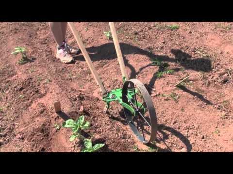 Hoss Wheel Hoe - Garden Tool