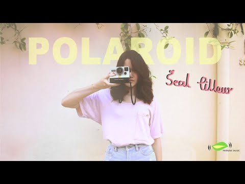  (Polaroid) - Seal Pillow [Official Audio]