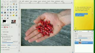 Removing Photo Backgrounds With The Gimp (free Photo