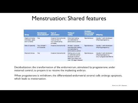 6.5 The Evolution of Reproduction: Menstruation and Menopause