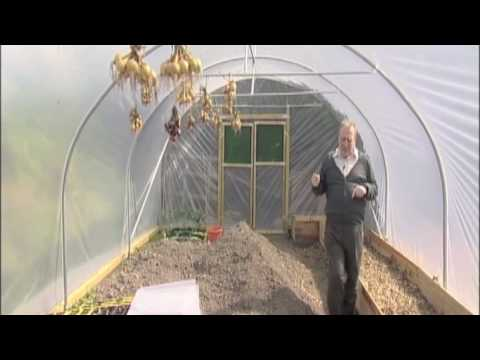 Positioning of a polytunnel