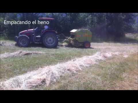 Video Cosechando la hierba en Cavalls Wakan Autor: Imgagen Miniatura Youtube